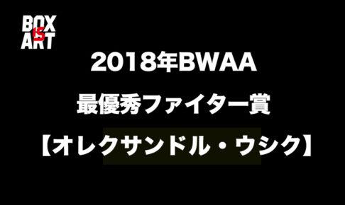 2018年BWAAファイター・オブ・ザ・イヤー賞【オレクサンドル・ウシク】が受賞