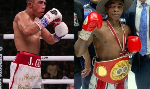 フライ級統一戦『WBCマルティネス』vs『IBFムザネラ』交渉中?どっちが勝つ?